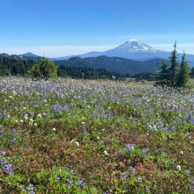 My Fourth Big Hike: Washington's Goat Rocks Wilderness