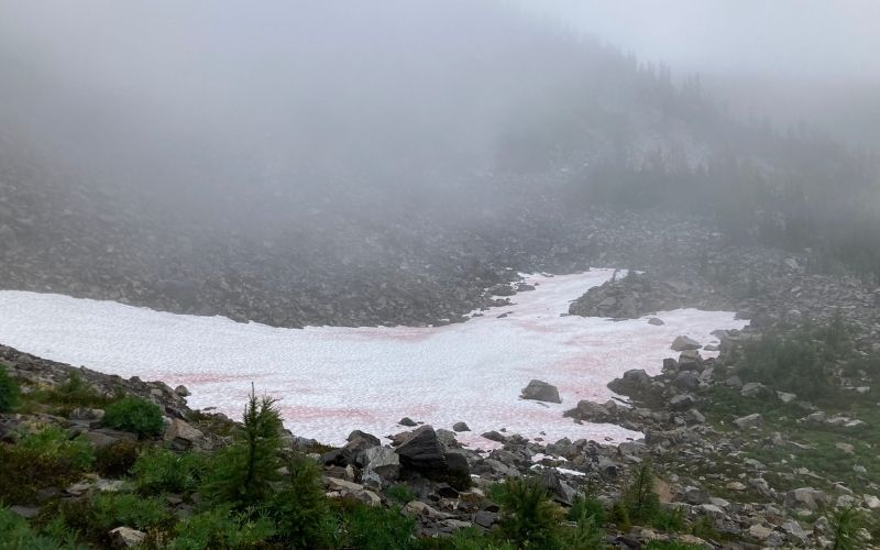 snow or glacial remains on the rocks in a mountain valley