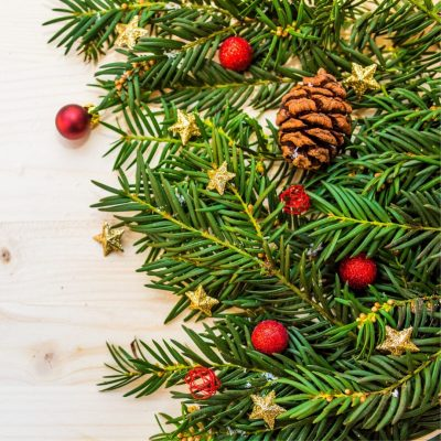 Ask Susan: A New Vision for Your Christmas