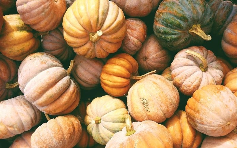 a bunch of pumpkins, orange, green, and white